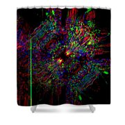 Collidal Shower Curtain