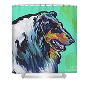 Collie Collie Shower Curtain
