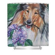 Collie With Lilacs Shower Curtain by Lee Ann Shepard