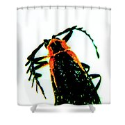 Coloful Beetle Shower Curtain