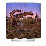 Coloful High Mountain Splendor Shower Curtain