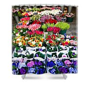 Cologne Flowers Shower Curtain