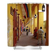 Colombia Walkway Shower Curtain