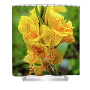 Colombian Flower Shower Curtain