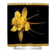 Colombine 1 Shower Curtain