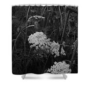 Colonial Garden At Twilight Shower Curtain