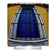 Colonial Window Shower Curtain
