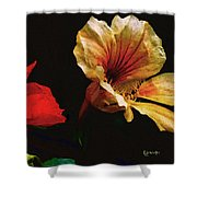 Color And Light Suspended Shower Curtain