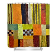 Color And Pattern Abstract Shower Curtain
