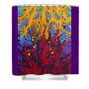 Color Clash Shower Curtain