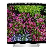 Color Combination Flowers Cc73 Shower Curtain