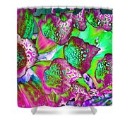 Color Dream Shower Curtain