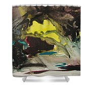 Color Fever 117 Shower Curtain