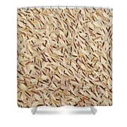 Color From The Seagulls Coralville Reservoir Shower Curtain