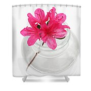 Color Full Of Life Shower Curtain by Amanda Barcon