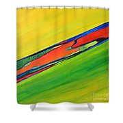 Color I Shower Curtain