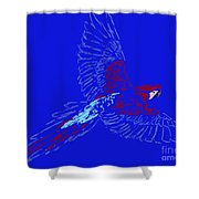 Color In Flight Shower Curtain