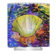 Color In Shell Shower Curtain