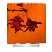 Color Me Autumn 2 Shower Curtain