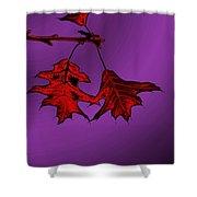 Color Me Autumn Shower Curtain
