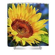 Color Me Happy Sunflower Shower Curtain