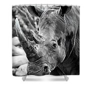 Color Me Rhino Shower Curtain