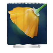 Color Of Love Shower Curtain