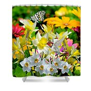 Color Of Nature Shower Curtain