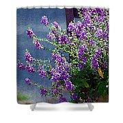 Color Purple Shower Curtain
