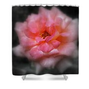 Color Returning Shower Curtain