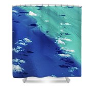 Color Shift Shower Curtain
