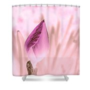 Color Trend Flower Bud Shower Curtain