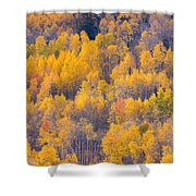Colorado Autumn Trees Shower Curtain