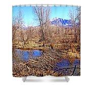 Colorado Beaver Ecosystem Shower Curtain