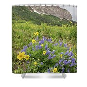 Colorado Color #4 Shower Curtain
