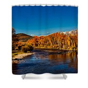 Colorado Cottonwoods In Autumn Shower Curtain