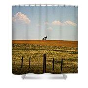 Colorado Crude Shower Curtain
