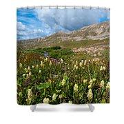 Colorado Late Summer Splendor Shower Curtain