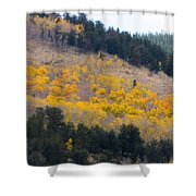 Colorado Mountain Aspen Autumn View Shower Curtain