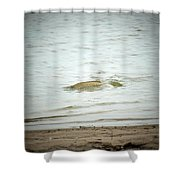 Colorado Net Fishing Shower Curtain