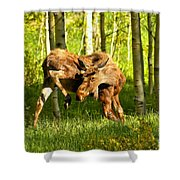 Colorado Rockies Moose Shower Curtain