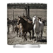 Colorado Run Shower Curtain