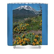 Colorado Spring Wildflower And Mountain Portrait Shower Curtain by Cascade Colors