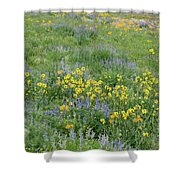 Colorado Summer Color Shower Curtain