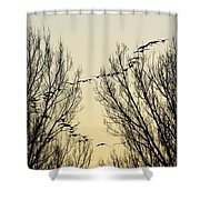 Colorado Sunsets 1 Shower Curtain