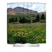 Colorado Wildflower Spectrum Shower Curtain