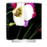 Colorado Wildflower1 Shower Curtain