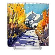 Colorado Winter 1 Shower Curtain