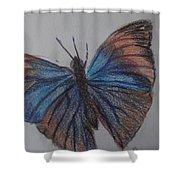 Colored Butterfly Shower Curtain