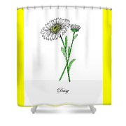 Colored Daisy. Botanical Shower Curtain